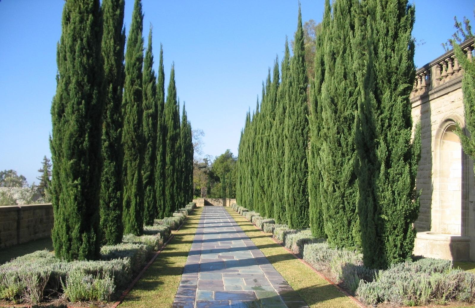 Greystone mansion gardens the doheny estate for The greystone